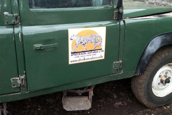 Racecar designed logo goes on safari with used Landy