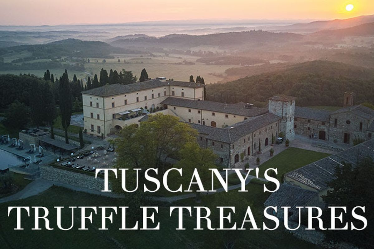 No truffles this Xmas: Join a truffle hunt in Tuscany