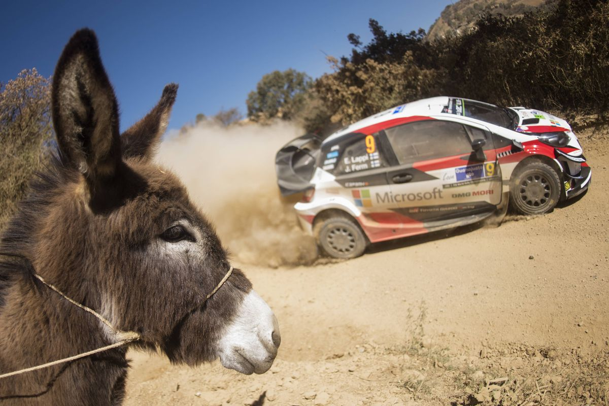 WRC Championship leader Tänak faces dirt road trial in Mexico